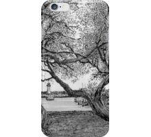 Windblown Trees Belmore Basin iPhone Case/Skin