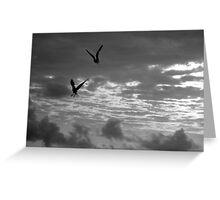 2 Flying Birds Greeting Card