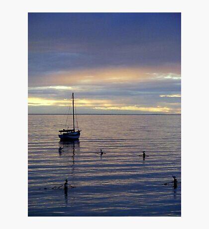 Sail Away. Photographic Print