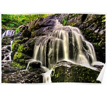 HORNBECKS CREEK , INDIAN LADDER FALLS  Poster