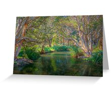 Centenial Park Riverlet - Sydney, NSW, Australia Greeting Card