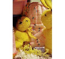Bunny Family Massacre # 2 Photographic Print