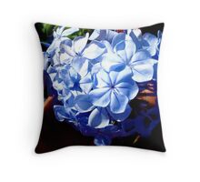 Ahhhh! flowers, some care, some don't. Cool Throw Pillow