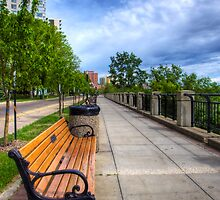 Bench on the Path Perspective by Myron Watamaniuk