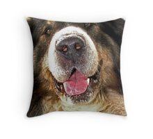 Barney Throw Pillow
