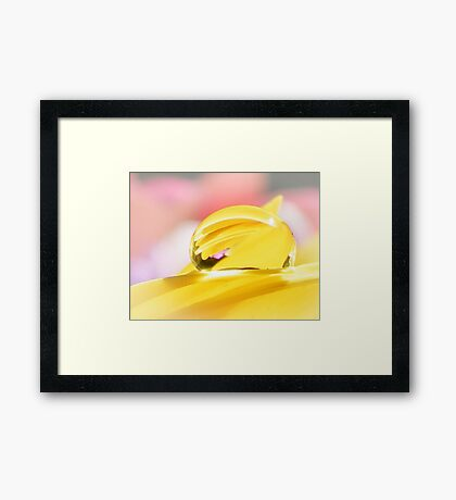 A Drop Of Yellow Framed Print