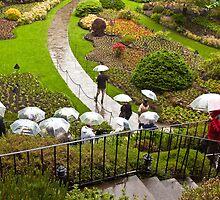 Sunken Garden, Butchart Gardens, Victoria by Barb White