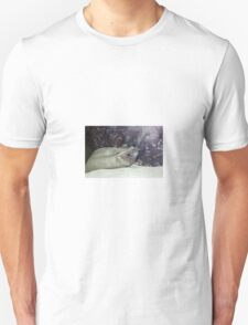 Moray eels Unisex T-Shirt