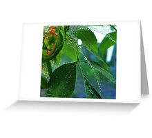 Pearls and Emeralds Greeting Card