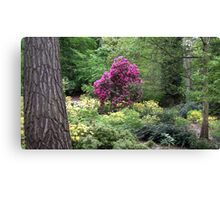 Richly Coloured Canvas Print