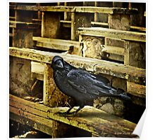 ...nevermore... Poster