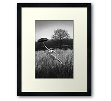 Up, Up and Away. Framed Print