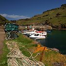 Boscastle Harbour by David Meacham