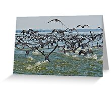 Off we go! Greeting Card