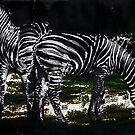 Two Zebras by miroslava