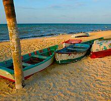Progreso Boats - Watercolor Filter by Zane Paxton