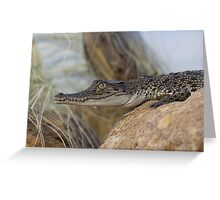 Saltwater Crocodile Greeting Card