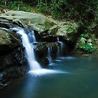 Buderim Falls by Beth  Wode