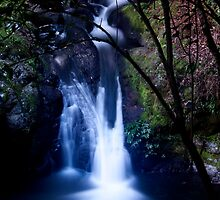 Bunyip Falls, Box Forest Circuit by smallan