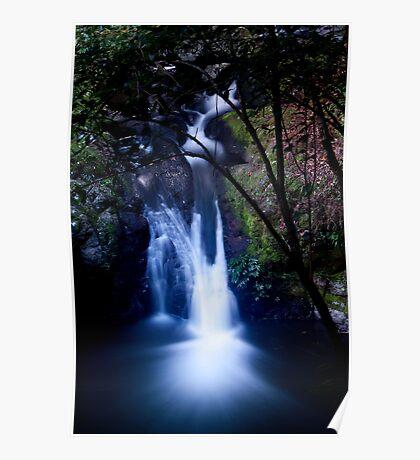 Bunyip Falls, Box Forest Circuit Poster