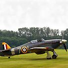 Hawker Sea Hurricane by Hertsman