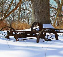 Times Gone By by Susan Blevins
