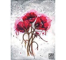 Lisa's Poppies Photographic Print
