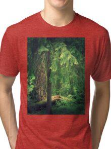 Forest Light Tri-blend T-Shirt