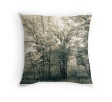 The Splendor Of A Spring Afternoon  Throw Pillow