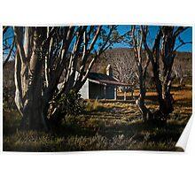 Bradley's hut. Poster
