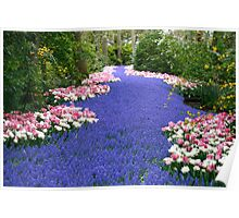Keukenhof, Holland - way to heaven Poster