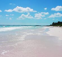 Pink Sands 2 by Srabanti Maitra-Mehta