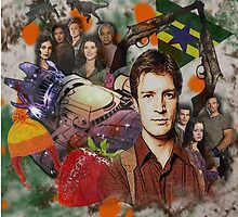 Firefly Collage by Gwright313