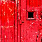 Red Doors by Minna  Waring