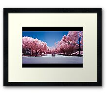 Stanford Court Framed Print