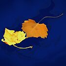 Dancing Leaves by CarolM