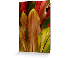 Nature in Colour Greeting Card