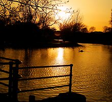as the sun set's by lurch