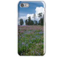 Invincible iPhone Case/Skin
