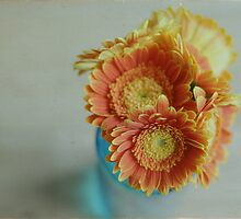 ~orange gerberas by TeresaMurphy
