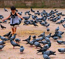 Pigeon Chasing in Durbar Square, Kathmandu by Maggie Woods