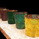 Buck-Buck-Buckets by Lois  Bryan