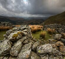 Sheep Fold by David Robinson