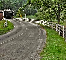 Summer at Jackson's Saw Mill Covered Bridge #2 by Monte Morton