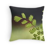 bokeh sunset... Throw Pillow