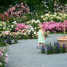 Walking In the Rose Garden by Bernadette Claffey