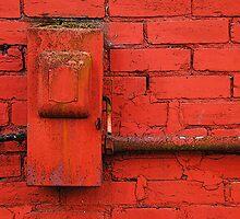Old Electrical Box by Jennifer Hulbert-Hortman