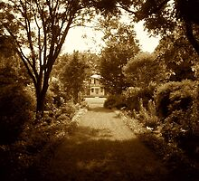 Garden Path, Brandon Plantation by AJ Belongia