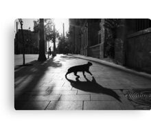 the animal Canvas Print