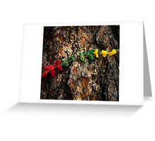Prayer Cloths on a Tree in Devils Tower National Monument  Greeting Card